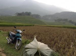 Motorbike heaven.