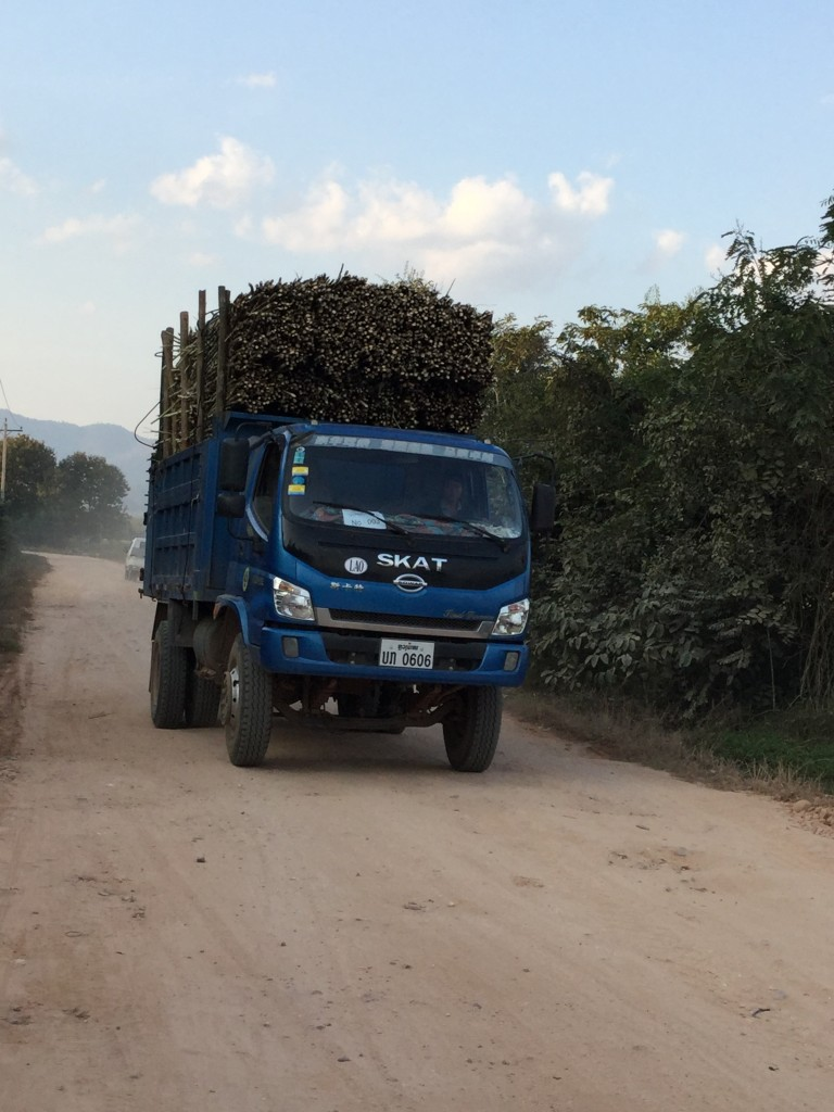 Truck loaded with sugar cane headed to the Laos-China border.