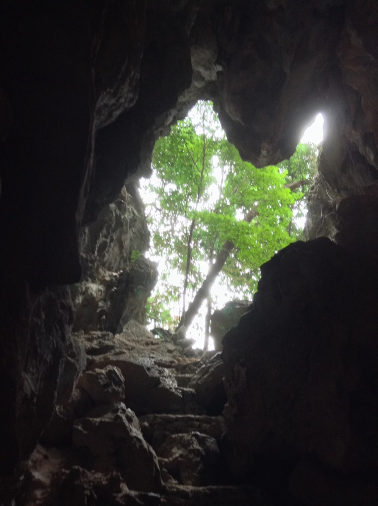 View up through the cave from the depths!