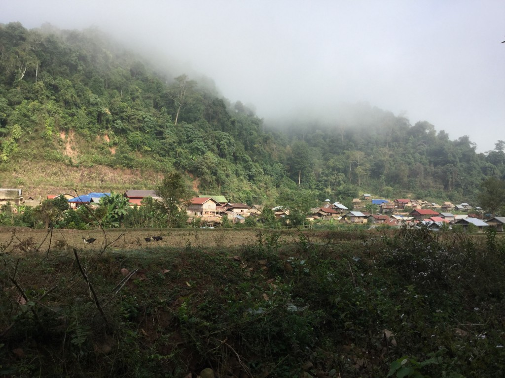 Village along our trekking route.
