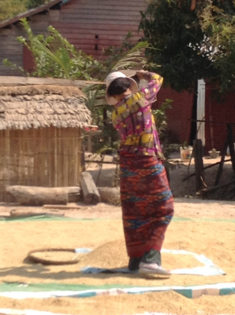 A village woman gently spreads out the rice to dry in the sun and it is th only sound made during our siesta after intalling the water filtets.